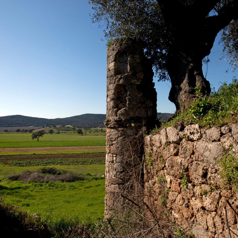 Valle d'Oro